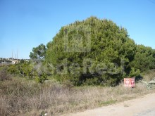 LAND WITH RUIN FOR SALE IN QUARTEIRA%6/16