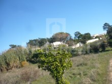 LAND WITH RUIN FOR SALE IN QUARTEIRA%12/16