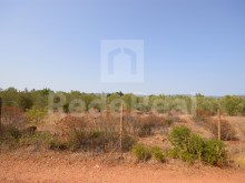 For sale-rustic land for agriculture, with easy access by car.