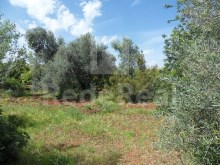Rustic land for sale in Paderne, Albufeira.