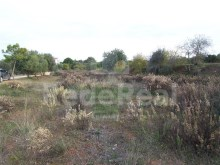 Cultivation of land for sale in Albufeira.
