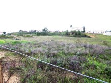 Land with 8,820 m2 with great location and excellent access for sale in Sesmarias, Albufeira