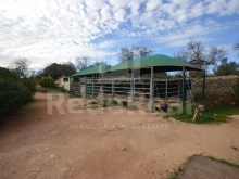Land with ruin for sale in Albufeira (8)%9/25