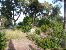Plot with views to the sea of 1035m 2 in exclusive area Turo Lloret ref.1120 |