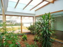 Interior garden, Luxury Villa with 6 bedrooms, Lisbon - Portugal Investe%6/33