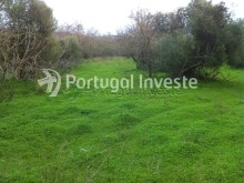 Rustic land with 4552 ha, very well located in Albufeira- Portugal Investe%2/3