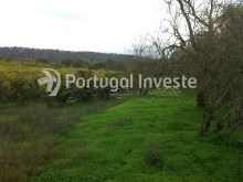 For sale rustic land with fertile land, very well located in Albufeira- Portugal Investe%1/3