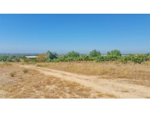 plot outside tavira seaviews 07.29.JPG%8/19