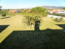 7 bedroom villa with swimming pool, Cascais: land at the back of the House%20/28