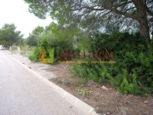 Urban plot in Colonia de Sant Pere_Arta_09%9/12