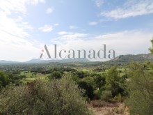 Parcela edificable en Golf de Pollensa 14%14/16