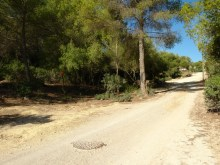 Urban plots in Calviá_access from the plot to Cala Vinyes beach_08%8/9