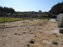 LAND WITH WELL / BORE AND OLD HOUSE - SILVER COAST%20/21