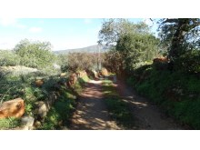 Rustic land in Alecrineira, Quelfes%7/7