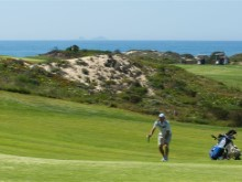 golfe course%8/11