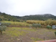 4 Bed Villa in Cadaval - arable crop land.JPG%10/10