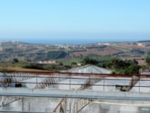 Plot with ocean views - Lourinhã (8)%3/12