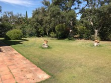 villa for sale sotogrande%19/20