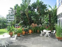 Apartments for Sale Prime Properties Madeira Real Estate (3)%5/18