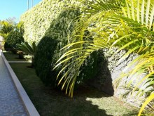 House for Sale Funchal Prime Properties Madeira Real Estate (17)%16/17