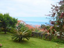 Houses for Sale Prime Properties Madeira Real Estate  (4)%5/31