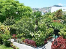 Houses for Sale Prime Properties Madeira Real Estate  (28)%31/31