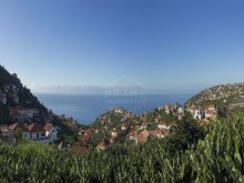 House For Sale Madeira 28%21/29