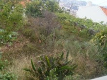 House for Sale Funchal (19)%18/19