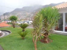 Vende Moradia Machico Prime Properties Madeira Real Estate (18)%19/23