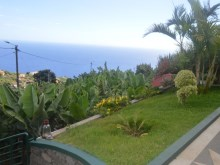 House for sale Ponta do Sol (7)%8/15
