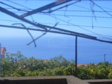 Quinta for Sale in Calheta (4)%5/9