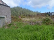 Land for Sale Prome Properties Madeira Real Estate (6)%6/6