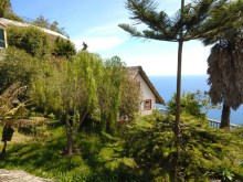 Prime Properties Madeira Real Estate House for Sale in Neves Sao Goncalo Funchal (11)%12/14