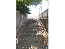 Traditional Madeiran Quinta to restore Prime Properties Madeira Real Estate (2)%4/12