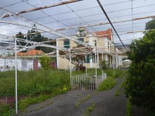 Quinta For Sale Funchal Prime Properties Madeira Real Estate (4)%3/10