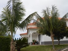 House for Sale Arco da Calheta (4)%2/20