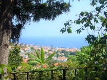Prime Properties Madeira Real Estate 20%15/18