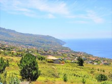 Immobilien Madeira Prime Properties Madeira Real Estate (5)%18/18