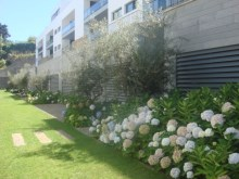 Luxury Apartments for Sale Funchal Prime Properties Madeira Real Estate  (2)%3/33