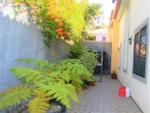 Immobiliere Madere Prime Properties Madeira Real Estate  (4)%16/24