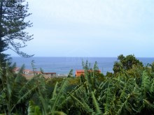 Beach house property for sale Prime Properties Madeira Real Estate (3)%3/5