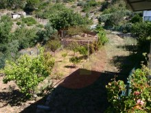 Farm-Sale-Monchique, Algarve%7/25