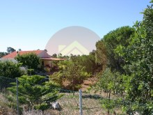 Farm-Sale-Monchique, Algarve%6/25