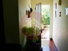 Farm-Sale-Monchique, Algarve%20/25