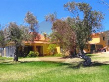 Farm with House T1-sale-Silves, Algarve%5/12