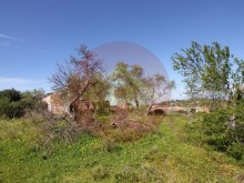Farm-Ruin-Sale-Porches-Lagoa, Algarve%15/15