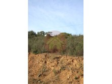 Land-Sale-Alferce-Monchique%10/11