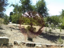 Land-sale-Poio, Algarve%6/11