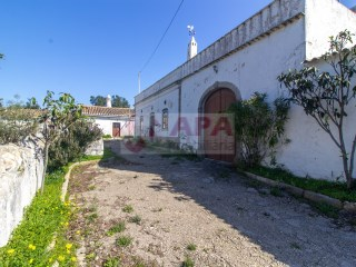 Ferme Santa Bárbara de Nexe - Acheter