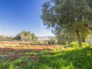 Rural Land Loulé (São Clemente) - For sale